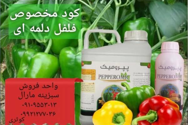 فروش کود مخصوص فلفل دلمه ای - مروست یزد