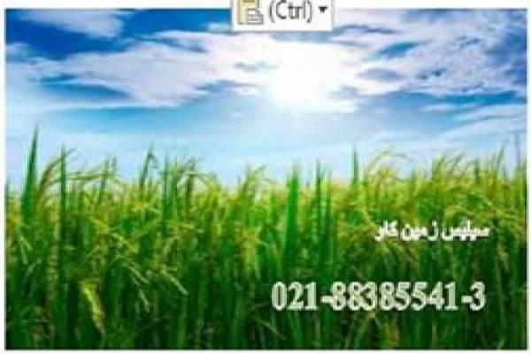 فروش کود سیلیس برای کشاورزی در تهران