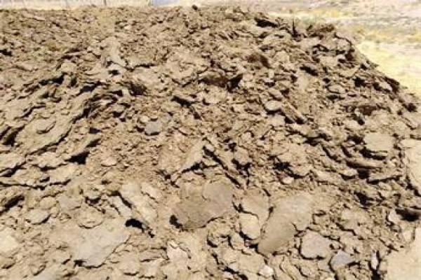 فروش کود گاوی خشک در قم