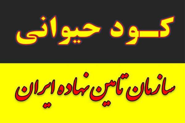 فروش کود مرغی ، کود حیوانی و کود گاوی دامی گوسفندی-مشهد