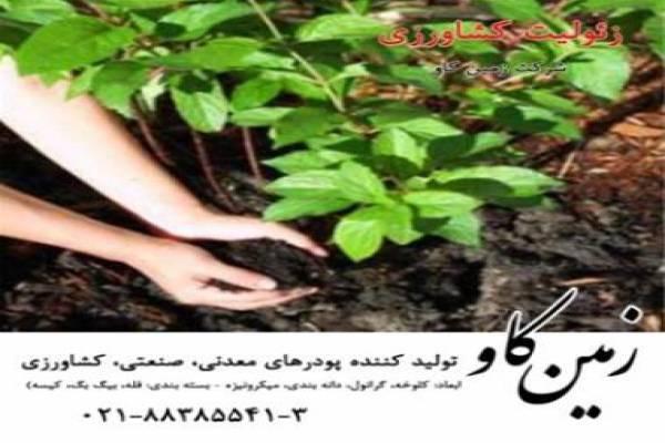 فروش زئولیت جهت تولید کود در تهران