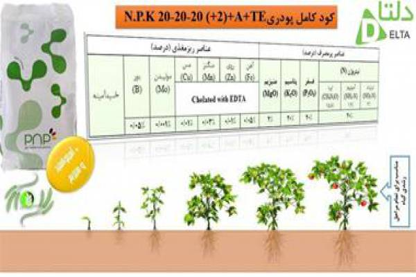 فروش کود کامل پودری پی ان پی در کرج