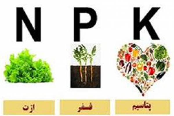 فروش کود NPK  پروتئوکل در تهران