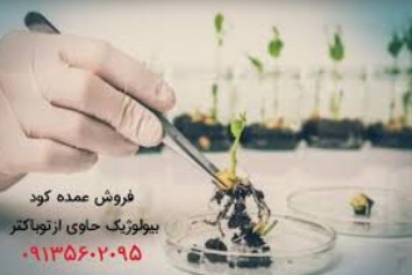 فروش عمده کود بیولوژیک ازتوباکتر_ اصفهان