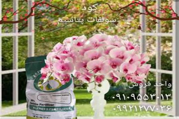 فروش کود سولفات پتاسیم - در یزد