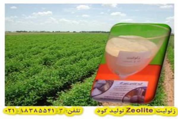 فروش زئولیت (Zeolite) جهت تولید کود در تهران