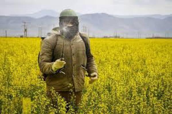 فروش سم و کود و بذر و محصولات کشاورزی - اصفهان