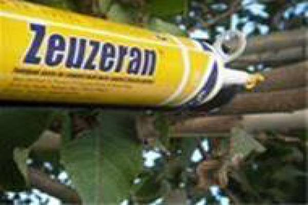 زئوزران خمیر شیمیایی جهت کنترل انواع کرم - اراک