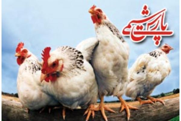 فروش کود مرغی در اصفهان