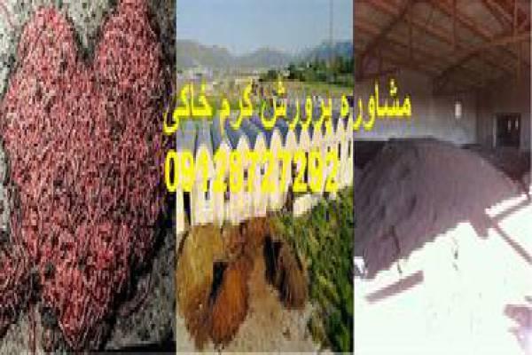 فروش کود ورمی کمپوست-کرمان