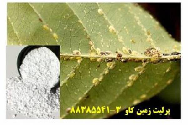 فروش پرلیت تولبد سم کشاورزی در تهران