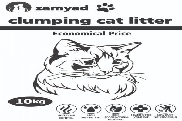 خاک بستر گربه