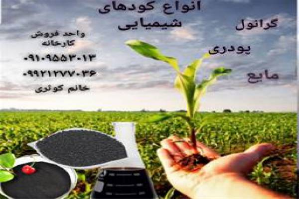 فروش کود های گرانول پودری و مایع در زنجان