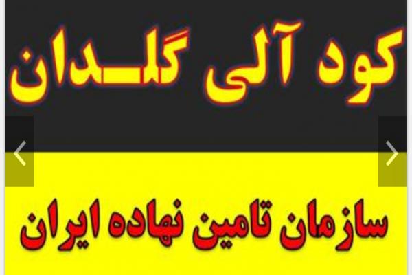 فروش کود آلی گلدان و نهال در اصفهان