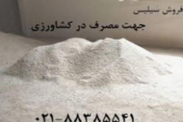 عرضه سیلیس جهت کود مایع سیلیس _اصفهان