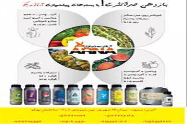 فروش بسته های پیشنهادی آرنا توسعه در مشهد