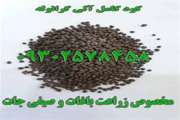 فروش کود گوگردی -تهران