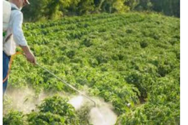 فروش انواع کود کشاورزی_اردبیل