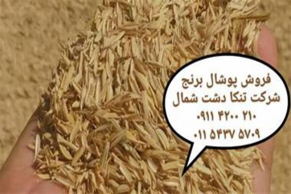 فروش پوشال برنج در کشاورزی-شیرود مازندران