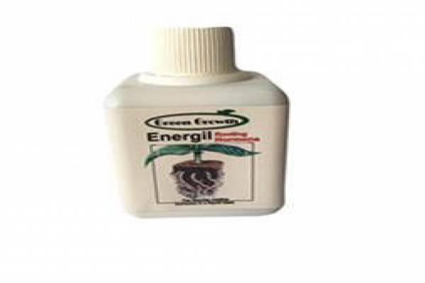 فروش هورمون ریشه زائی Energil در مشهد