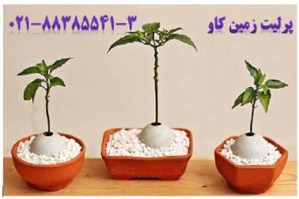 مزیت استفاده پرلیت در کشاورزی - تهران