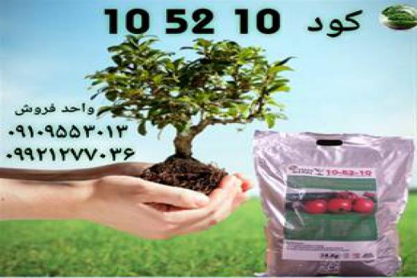 فروش کود پودری 10-52-10 در تویسرکان